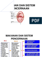 Pencernaan Makanan (Digestive)