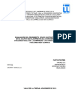 Proyecto cilantro España