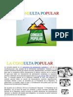 Consulta Popular Expo