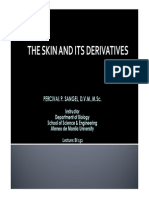 Lecture10- The Skin and Its Derivatives
