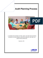 09-17-03 Joint Audit Planning Process With Cover[1]