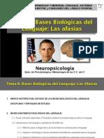 Presentación Tema 6.pdf