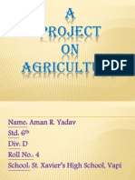 Project on Agriculture