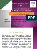 Medicion de Fibras Alnus Acuminata -Parte Comercial