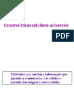 2012-2013 Turma 3 Informacao Genetica-replicacao