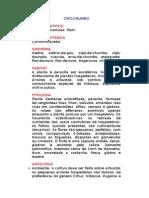 Cipó-chumbo - Cuscuta racemosa  Mart. - Ervas Medicinais – Ficha Completa Ilustrada