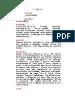 Confrei - Symphytum officinalis L. - Ervas Medicinais – Ficha Completa Ilustrada