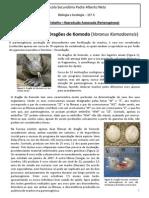 Ficha trabalho - Partenogénese_Dragaokomodo_final