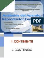 Anatomia y Fisilogia AP Rep Fem