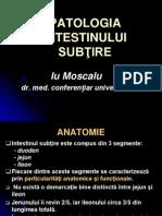 Moscalu Intes Sub Rom
