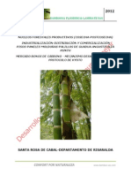 Plan Negocios Agroindustria Guadua Angustifolia Kunth