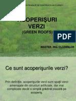 Acoperisuri- Verzi