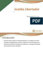 Encuesta Libertador Caracas VENEOPSA