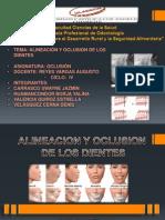 Alineacion y Ocluion Dental-okesonn on on On