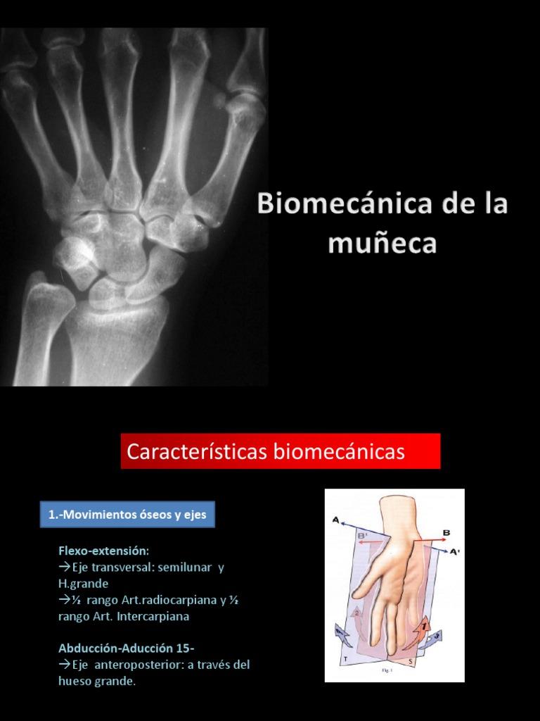 Biomecánica del Carpo,YO