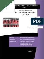 Informe de Capacidad de Retencion