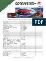 Lista Provisória de Material CDL (1).doc