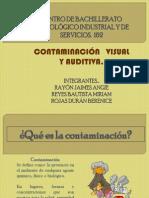 Contaminacion Visual y Auditiva