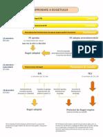 Procedura de Aprobare a Bugetului Ue (Grafica)