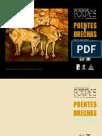 Puentes y Brechas – N° 3, 2012