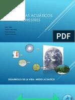 Ecosistemas acuáticos terrestres