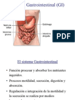 Todo Digestivo 1