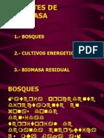 BIOMASAYENERGIA-2