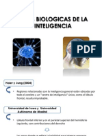 Bases Biologicas de La Inteligencia