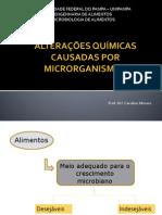 alterações-químicas-causadas-ro-microrganismos