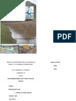 Comtaminacion Del Rio Torococha Juliaca