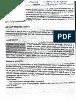 Comportament-Organizational-Gary-Johns