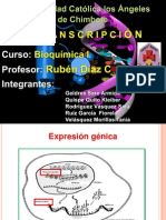 La Transcripcion. 1 Pptx