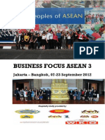 BFA 2012, EU-ASEAN Public Diplomacy - Business Networking (Integrated Report)