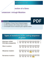 Mutations and Examples