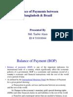 Balance of Paymentbrazil Tanbir