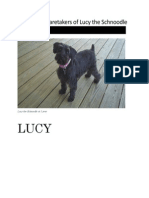 manual of lucy