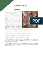 031 Teoria de La Medicina Tradicional China Mtc (1)