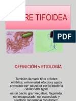 fiebretifoidea-ppt2-101204161959-phpapp01