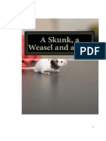A Skunk, A Weasel and a Rat!