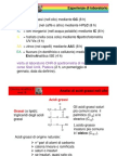 Lezione 2 VDM
