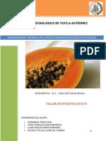 Procesamiento Integral de La Papaya Maradol (1)