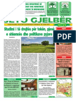 Jeto Gjelber 133