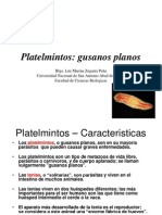 7.- Phylum Platelmintos