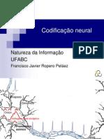 Aula 7 Natureza informação codif neural