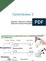 carbohidratos2-1011_alumnos