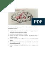 Jaras Bicara Mendengar Di Otak