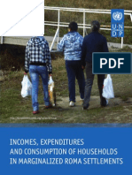Incomes, expenditures and consumption of households in marginalized Roma settlements