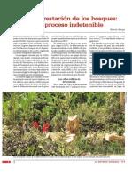 La Deforestacion de Los Bosques
