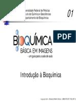 01 Introdução a Bioquimica PDF