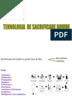 Tehnologia de Sacrificare La Bovine, Suine, Ovine Si Pasari